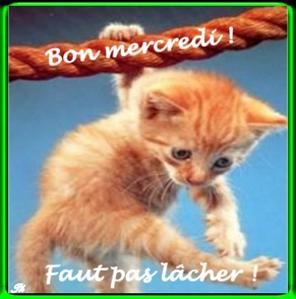 Bonjour, bonsoir..... - Page 5 D34a0f52